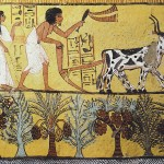Ancient Egypt Wall Paintings Smart Reviews Cool Stuff