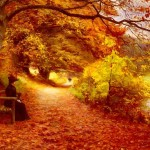 Anderson Brendekilde Wooded Path Autumn Painting Anysize Off