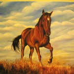 Animal Portraits Gallery Art For Sale Passion Horse