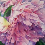 Artcolony Afternoon Peony Watercolor Floral Painting