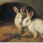 Beautiful Rabbit Paintings Hare Painting Artwork