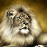Beauty Wildlife Big Cats Paintings The Day