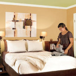 Bedroom Designing Creation Ideas For Painting Walls