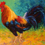 Big Rooster Painting Marion Rose Fine Art