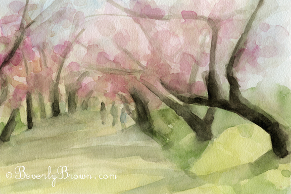 Blossoms Central Park Nyc Watercolor Landscape Paintings For Sale