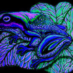 Blue Frog Drawing Nick Gustafson Fine Art Prints And