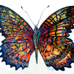 Butterfly Painting Mindy Newman Fine Art Prints And