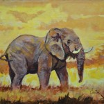 Calvin Carter Elephant Sketch Fine Art Prints And Posters For Sale
