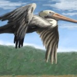 Carmel Pelican Digital Oil Painting The Embarcadero