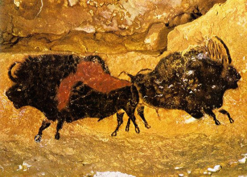 Cave Paintings From Southern France