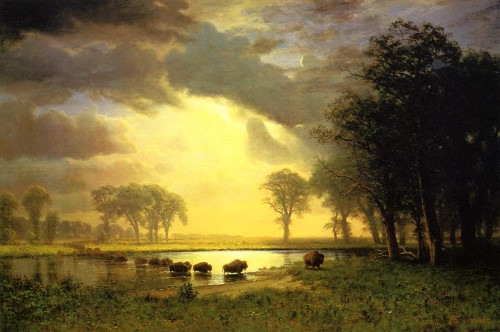 Century American Paintings Albert Bierstadt Ctd