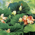 Chinese Painting Lotus Flower Impression