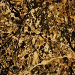 Close Jackson Pollock Stephen Fotopedia