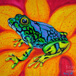 Colorful Frog Painting Nick Gustafson Fine Art