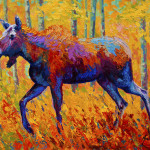 Cow Moose Painting Marion Rose Fine Art Prints And