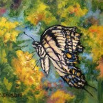 Daily Painting Projects Swallowtail Oil Tiger Butterfly