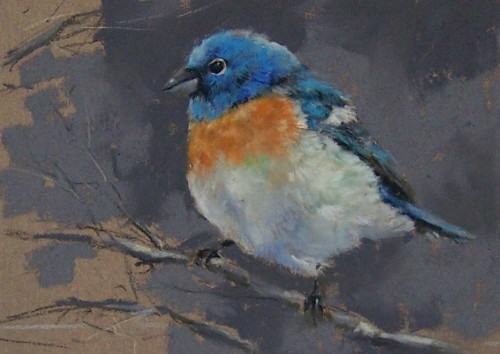 Daily Pastel Painting Lazuli Bunting