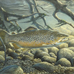 Decoys And Wildlife Gallery Art Paintings