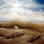 Driftwood Beach Share Your Story Favorite Landscape And