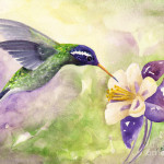 Eared Hummingbird Painting White Fine Art Print