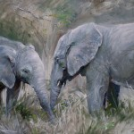 Elephant Greeting Painted Oils Inches Stretched Canvas