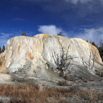 Elephant Springs Yellowstone Fine Art Prints And Posters For Sale