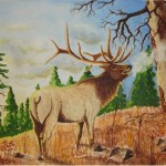 Elk Paintings Group Picture Image Tag Keywordpictures