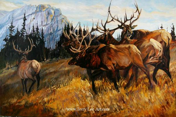 Elk Paintings Original Artwork Terry Lee