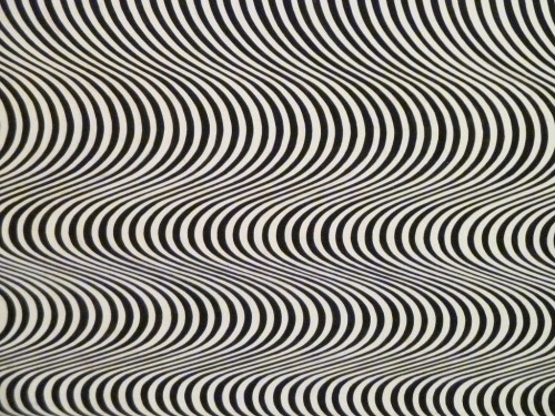 Fall Detail Bridget Riley Tate Modern