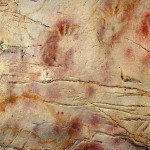Famous Cave Paintings Might Not From Humans Learn How