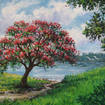 Fawn Paintings Flame Tree Royal Poinciana