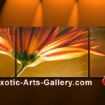 Feng Shui Paintings Flickr Sharing