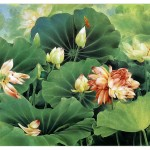 Flower Week Traditional Chinese Painting Zou Chuan