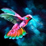 Flying Hummingbird Silencedmckay Deviantart