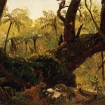 Forest Jamaica West Indies Paintings For Sale Oil