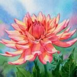 Fox Daily Paintings Dahlia Queen Sold Watercolor Floral Painting