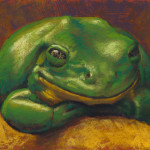 Frog Pastel Inches Click Here Bid Noticed That Frogs