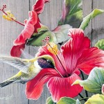 Funzug Floral Watercolor Paintings Rsharts
