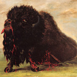 George Catlin Paintings For Web Search