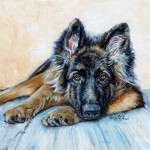 German Shepherd Painting Enzie Shahmiri Fine Art