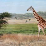 Giraffe Painting Finished How Paint Animals Wildlife Art