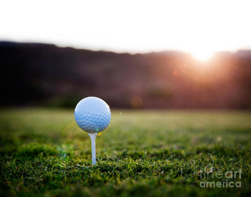 Golf Ball Graph Kati Molin Fine Art Prints And