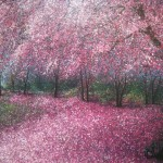 Graphic Impressions Camberwell Cherry Blossom Paintings Narate