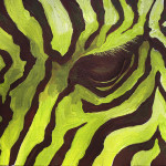 Green Zebra Painting Sandy Tracey Fine Art Prints And