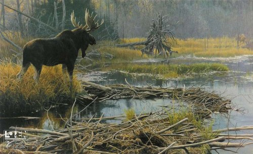 Harrop Art Gallery Robert Bateman Giclee Canvas Autumn Overture