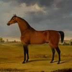 Horse Oil Painting Gwynn