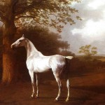 Horse Oil Painting White Pasture