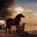 Horses Field Painting Paulus Potter Oil