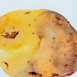 How Simple Learning Watercolor Paintings Potatoes Draw