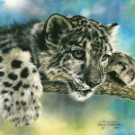 Intrigued Lesley Harrison Animals Paintings Pictures Lesleyharrison